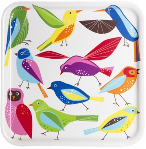 Baatar bird tray